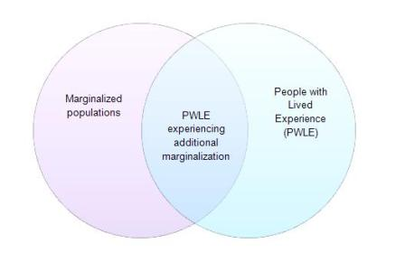 Diagram - People with Lived Experience
