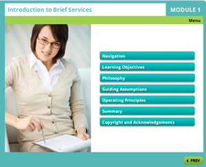 Brief Services-sm