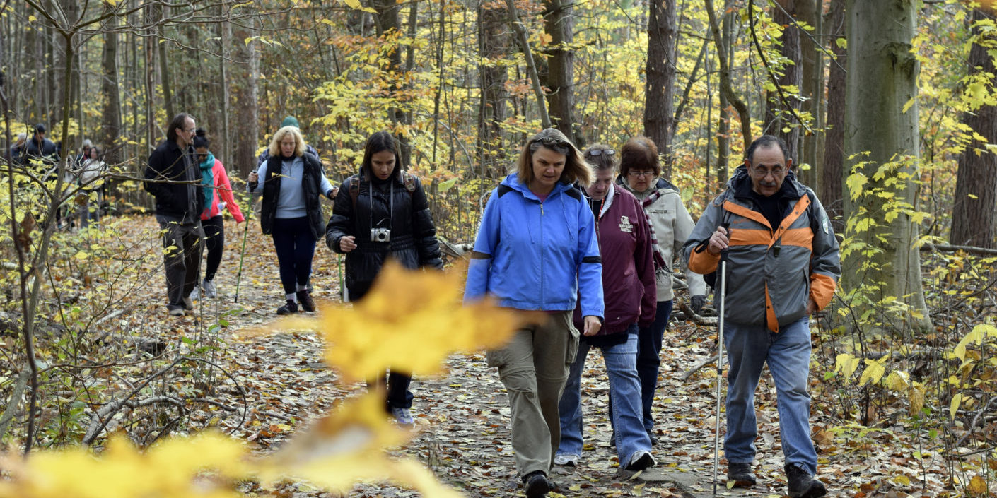 Hikers shown hiking in Richmond Hill, Ontario, October 29, 2014. With mounting evidence of nature's healing properties, the Canadian Mental Health Association has launched Mood Walks, with several Ontario branches running regular hikes for those coping with depression, anxiety and other mood disorders. (Aaron Harris/Toronto Star)